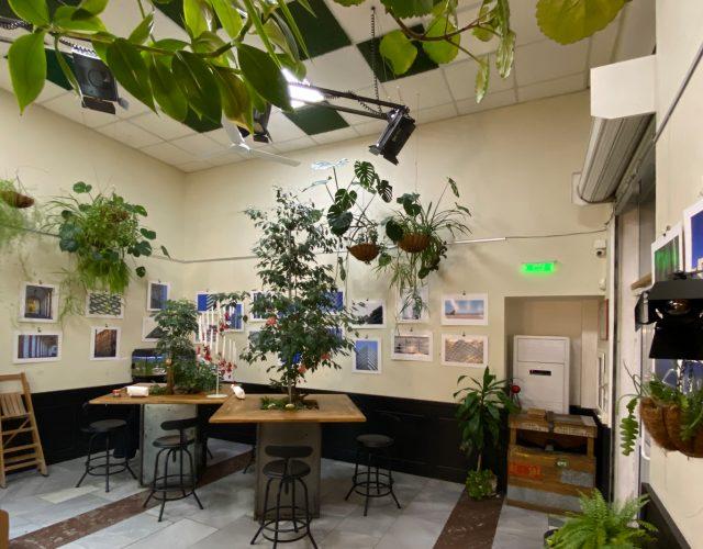 Фото изложба Arch Moments